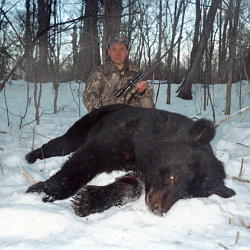 Black bear legally killed by hunter in russia this species was